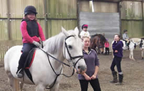 Somerset Riding School